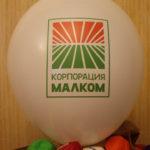 Печать на шарах в 2 цвета