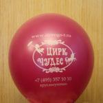 шарик Цирк Чудес