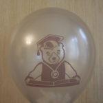 умный мишка на шарике