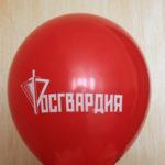 воздушный шар Росгвардия